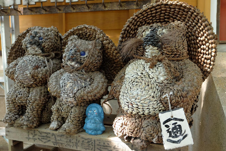 金長神社に集うたぬき。