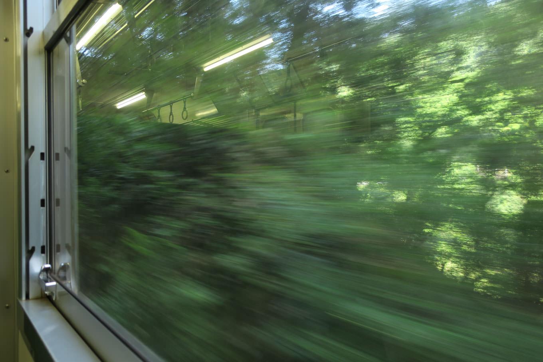 列車の車窓を樹林が流れ去る。見えそうで見えない渓谷美。