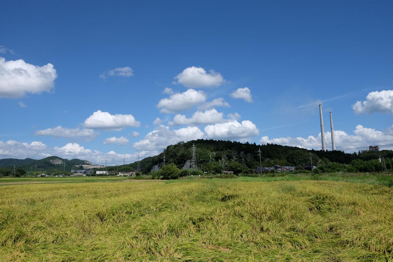 澄んだ青空に黄色味を帯びた田んぼ、沿道の景色には秋の気配が漂う。