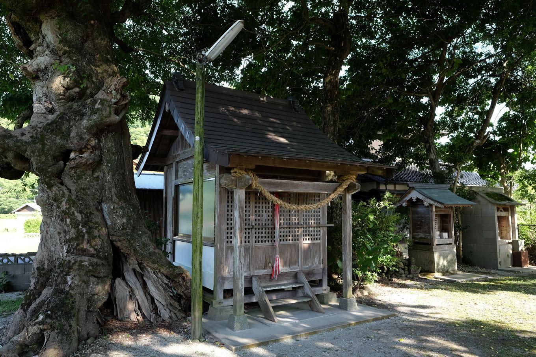こじんまりした社殿の蛭子神社。
