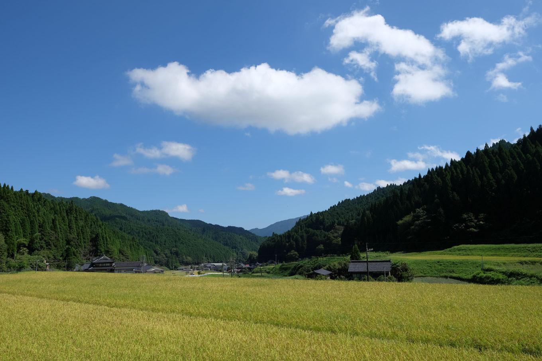 荘ノ尾城のふもと、奥本川の流れる明るい谷間。