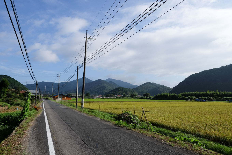 水田の広がる広い谷間をゆく。
