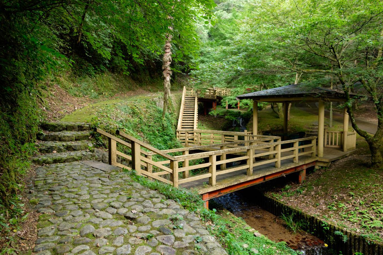 渓流沿いに遊歩道の整備された水神公園。