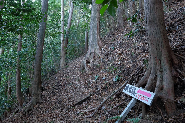 城跡に続く矢筈山登山道。