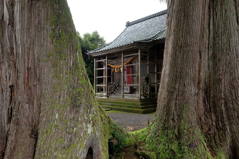 杉木立の中に佇む麻氣神社の拝殿。