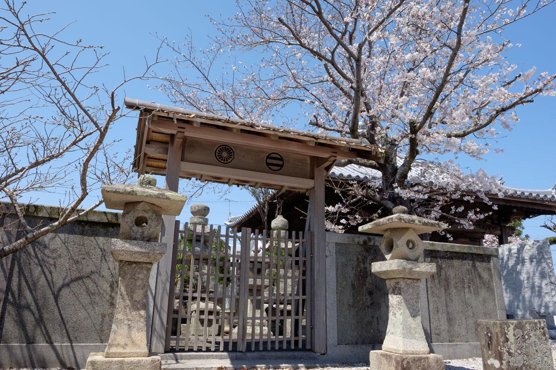 阿波公方の墓所。