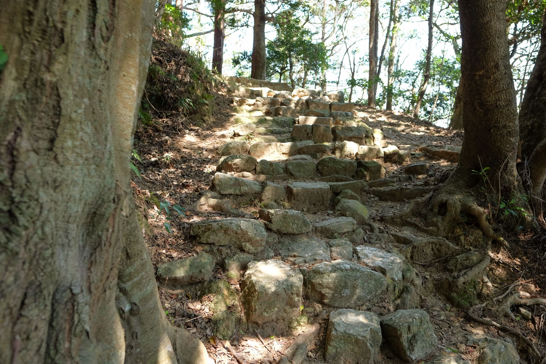 津峯神社の参道。