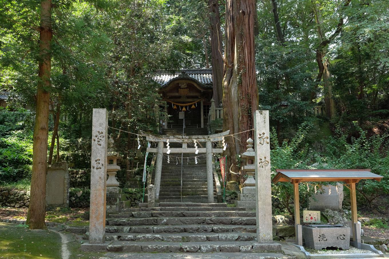 天神社と千代の大杉。