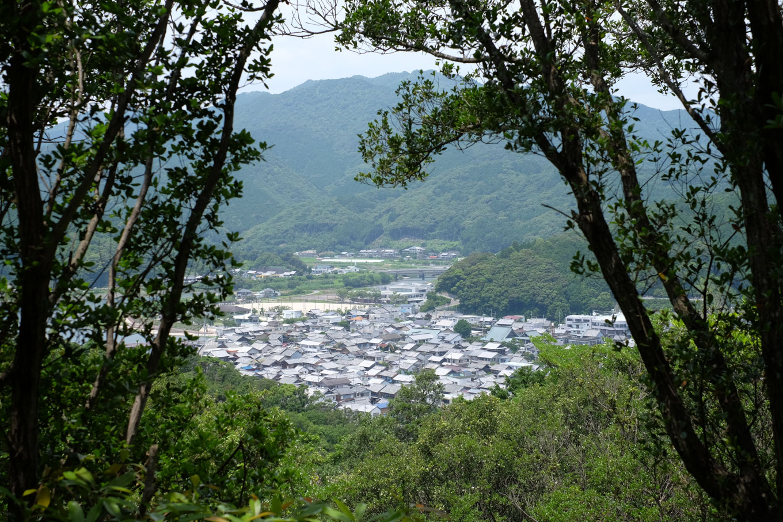 城山から眺める日和佐市街。