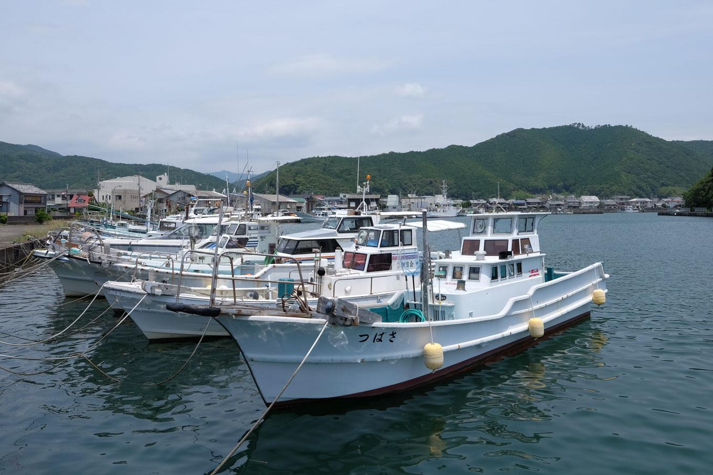 漁船の並ぶ日和佐港。