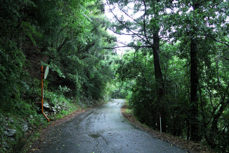 泰仙寺への道のり。